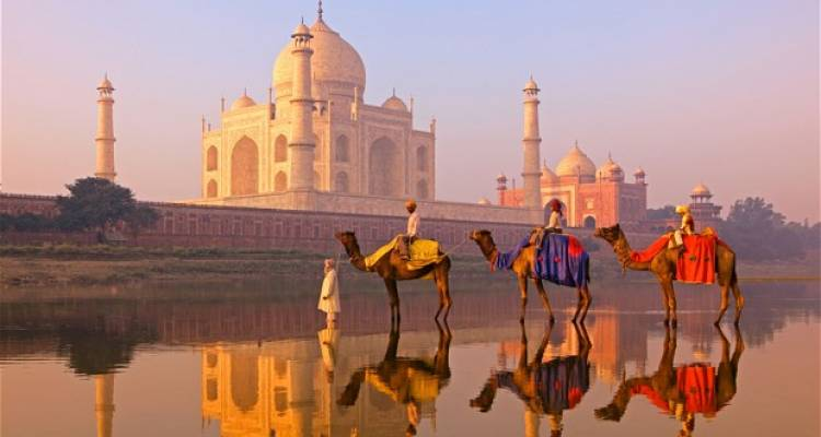 Golden Triangle Group Tour Package